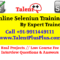 Online Selenium Training by Talent ++